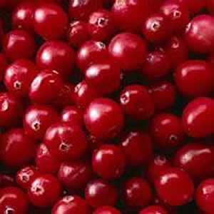 cranberry die amerikanische preiselbeere gesund24h magazin. Black Bedroom Furniture Sets. Home Design Ideas