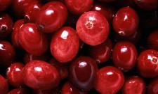 Antioxidantien Cranberry Q10