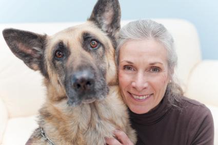 Spondylose bei Hunden – Vorsicht vor Nervenschädigungen