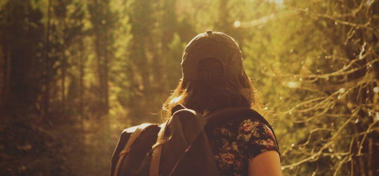 Wandern kann heilsam sein
