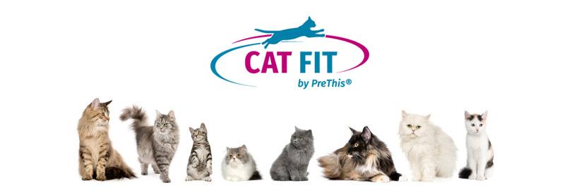 CAT FIT by PreThis für Katzen