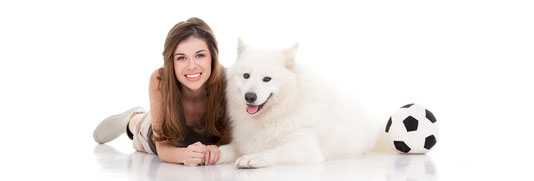 Gesunde Hundeglenke - Ein Leben lang!