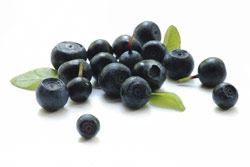 Die Acai Frucht