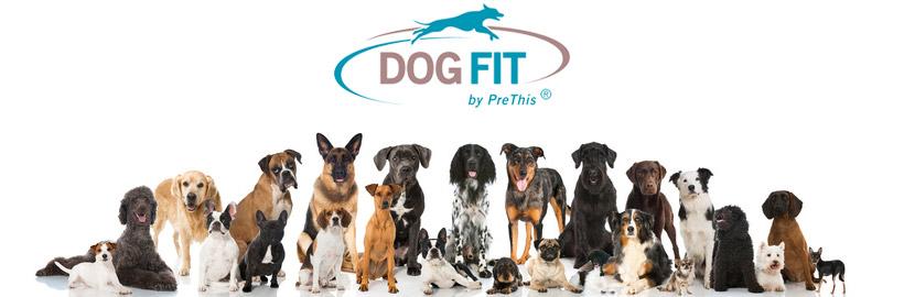 DOG FIT by PreThis für gesunde Hunde