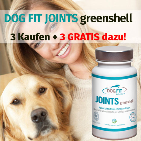 DOG FIT by PreThis® JOINTS greenshell - Grünlippmuschel Extrakt