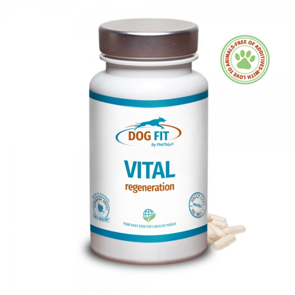 DOG FIT by PreThis® JOINTS collagen + calcium